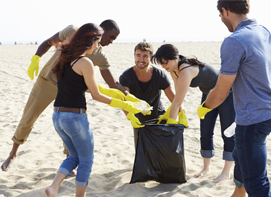 Group Beach Clean Up